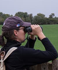 Let's bird: Binoculars