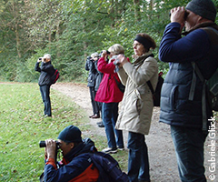 Birding workshops & guided tours: Guided tour in Nymphenburg