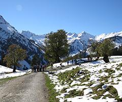 Birding sites - Alps