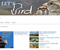 Miscellaneous - Using Let's bird-Videos