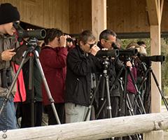 Vogelbeobachtungs ausrüstung bestimmungsbuch fernglas spektiv etc